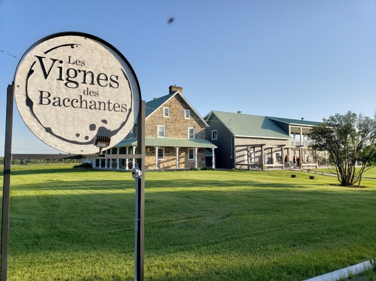 Les Vignes des Bacchantes